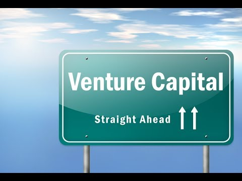 VCChat: Working with Investors Scale VP & Luma Capital Partners
