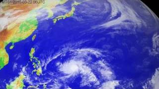 The 2010 typhoon season in the western North Pacific