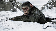 Movie Review - WAR FOR THE PLANET OF THE APES (2017) - Продолжительность: 5 минут