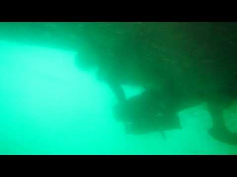 AQUADIVER Underwater Hull Cleaning Performance and Propeller Efficiency  on Panama