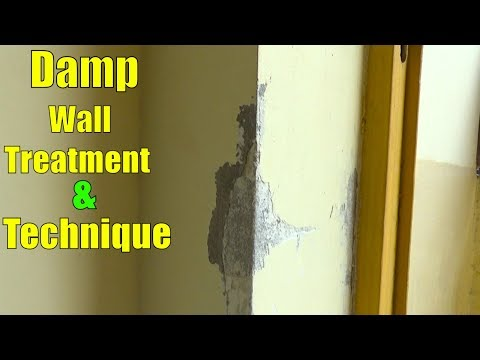 How to Treat Damp Walls Before Painting | Wall Painting Techniques