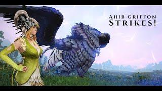 BDO - Dark rift boss Ahib Griffon - Ranger PoV