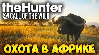 ОХОТА В АФРИКЕ САВАННА ВУРХОНГА   The Hunter Call Of The Wild стрим 8
