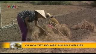 Bản tin thời sự Tiếng Việt 10h – 27/11/2015