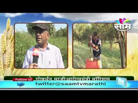 Ex Health Minister of Mauritius J.Govardhan visits Maharashtrian farmers's farm