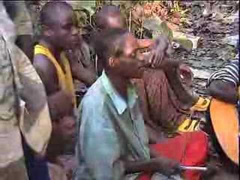 """Nawa"" live in the Cameroon rainforest"