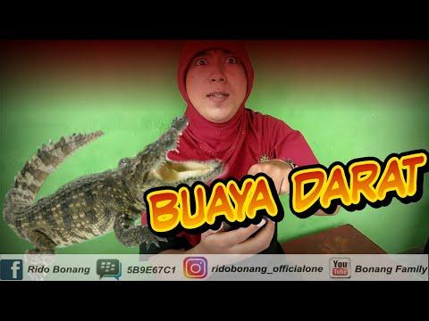 BONANG FAMILY - BUAYA DARAT ( OFFICIAL VIDEO )