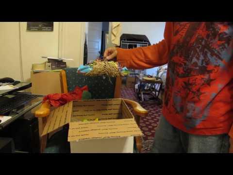 Parrot Toys unboxing