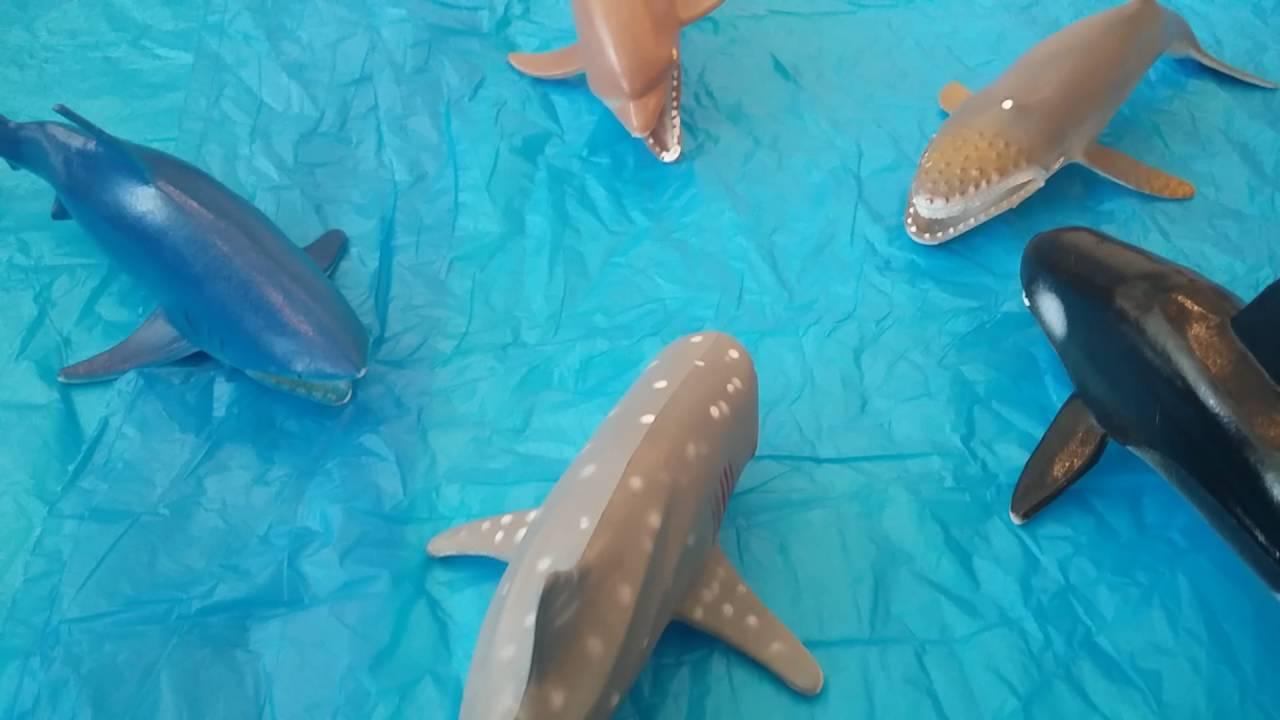 Hayvanlar Alemi - Büyüklerin Oyunu - 4.bölüm