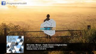 IRA pres. 8Kays - Feels Good (Original Mix)