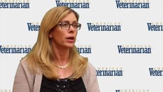 Common Myths of Veterinary Dentistry
