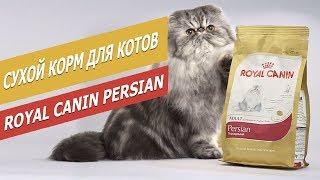 Сухой корм Royal Canin Persian для кошек | Обзор сухого корма для кошек  |  Overview of dry food
