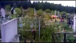 ужасы на кладбище