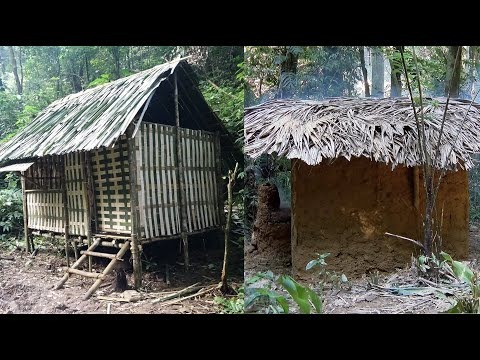 Six months of survival in the tropical rainforest (2nd)