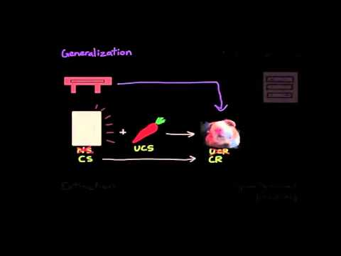 03   Learning   02   Classical conditioning  Extinction, spontaneous recovery, generalization, discr