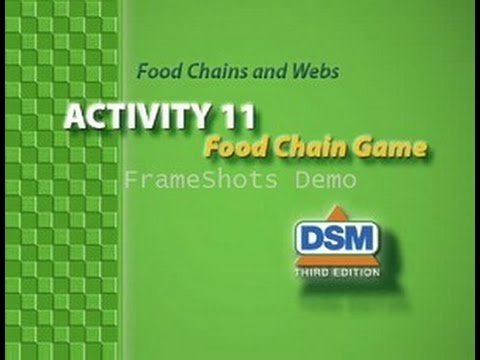 Food Chains and Webs - 11: Food Chain Game - YouTube