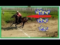 Horse Race video punjab INDIA 2017 and fun with friends