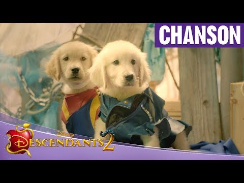 Descendants 2 - Dogscendants : It's going down