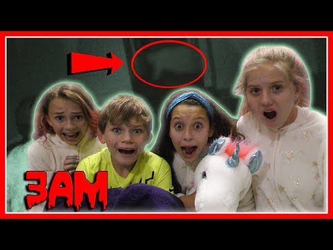 SLEEPOVER AT 3AM! | We Are The Davises