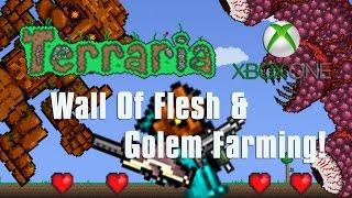 Terraria Xbox One Let