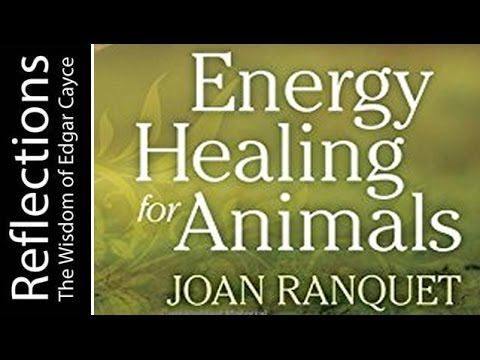 Reflections the wisdom of Edgar Cayce: Revelations of an Animal Communicator