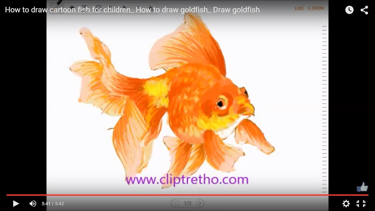 how to draw a cartoon goldfish step by step