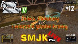🔴 Żniwa sianokosy i wiecznie głodne krowy Nowa Ameryka - Farming Simulator 17 PS4 PL LIVE #12