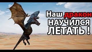 Наш дракон научился летать ! ( Day of Dragons )