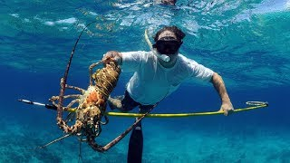 Amazing Crab Trap And Crayfish Underwater Gopro.. Giant Lobster Catching Under Deep Sea