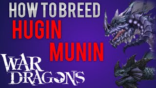 War Dragons - How to Breed Hugin and Munin!