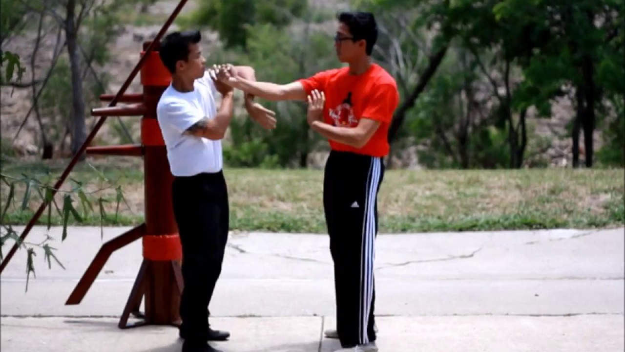 wing chun instructional videos