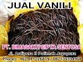 Vanilla Indonesia Origin