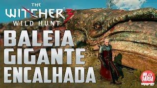 The Witcher 3 - BALEIA GIGANTE ENCALHADA ( Giant beached Blue Whale ) [ Localização ]