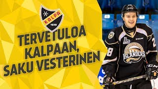 Haastattelussa Saku Vesterinen, 11.5.2018