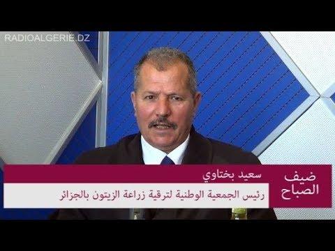 رئيس الجمعية الوطنية لترقية زراعة الزيتون بالجزائر سعيد بختاوي