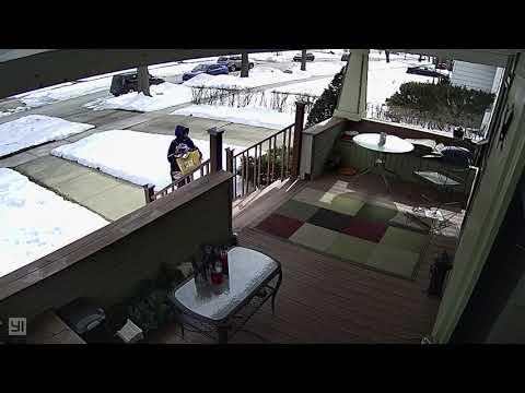 Hammond Indiana mail lady loses it!!!