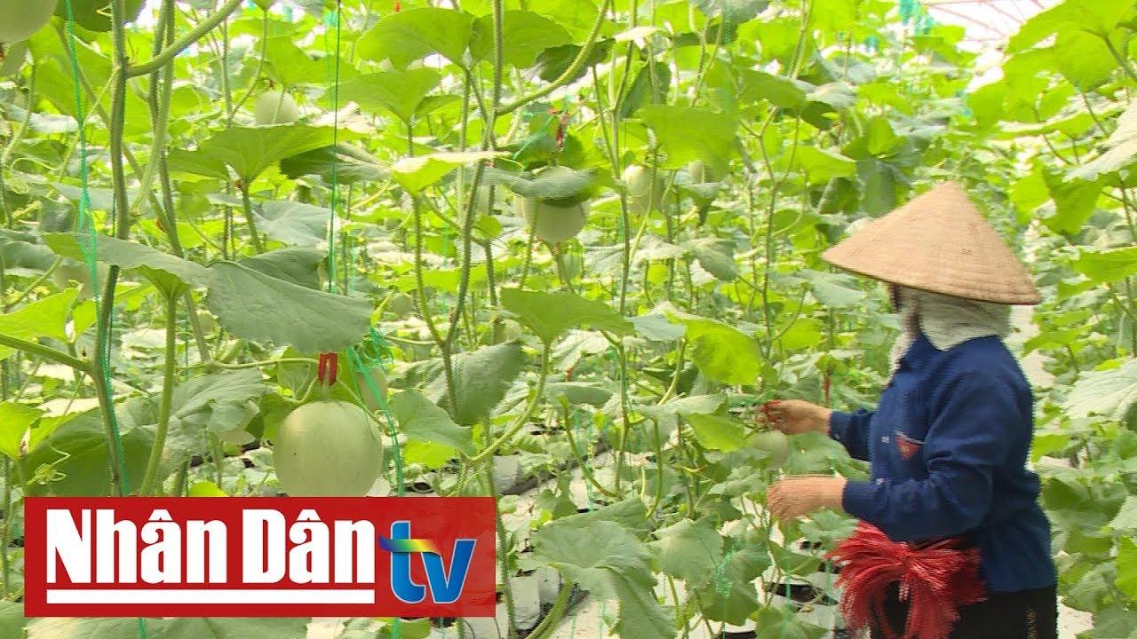 Nam quyết tâm đột phá bằng nông nghiệp công nghệ cao