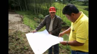 PEJSIB - Reforestación de Laderas - Provincia de Cutervo