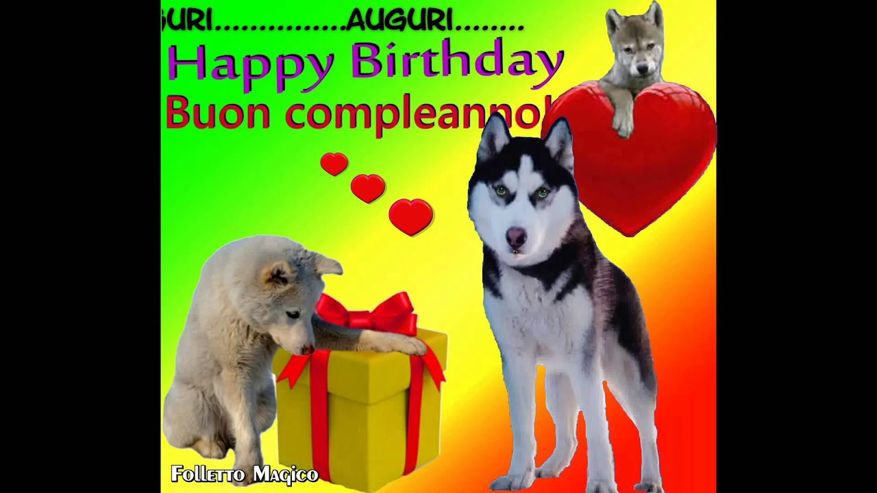 Buon Compleanno Tanti Auguri A Te Happy Birthday To You Cani