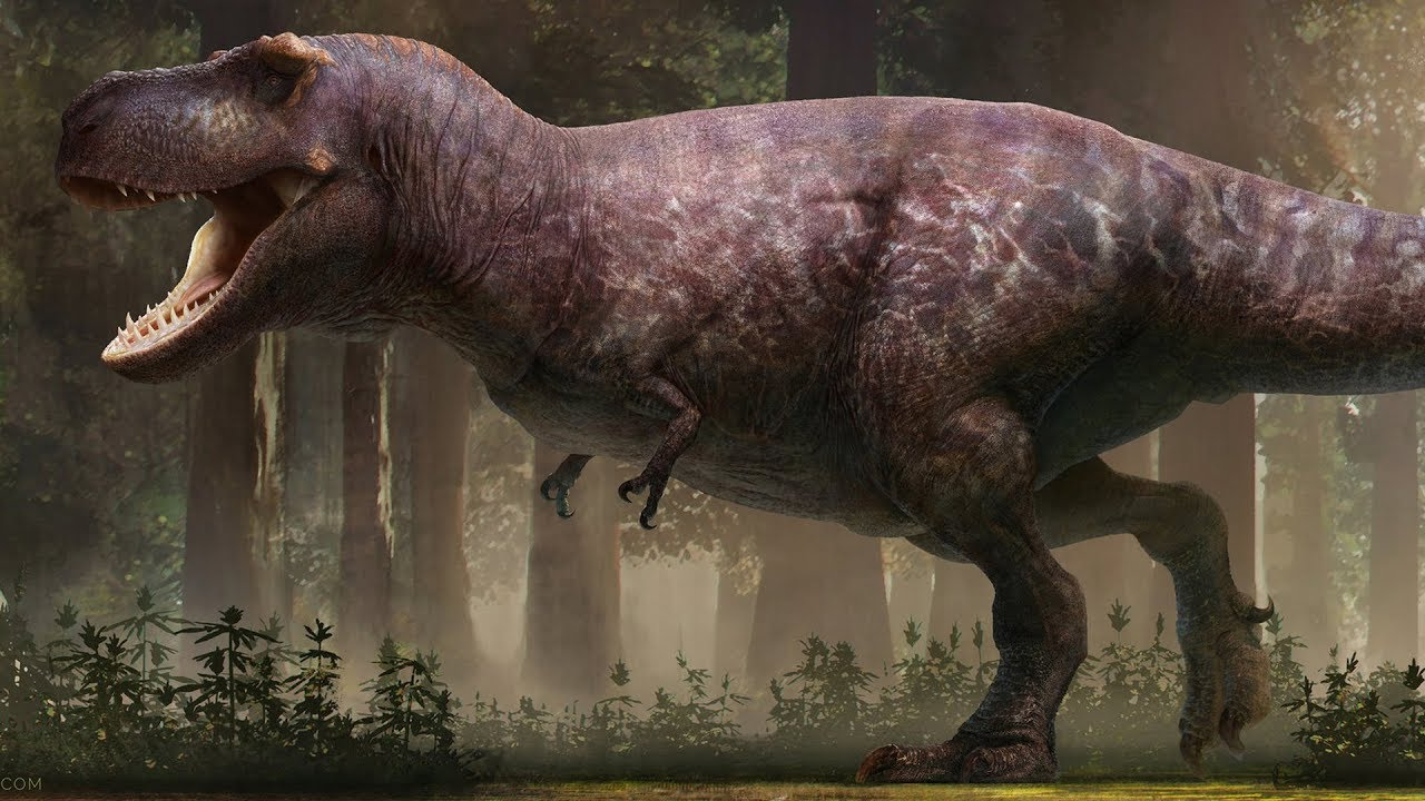 Download The Most Accurate T. rex Ever Reconstructed?