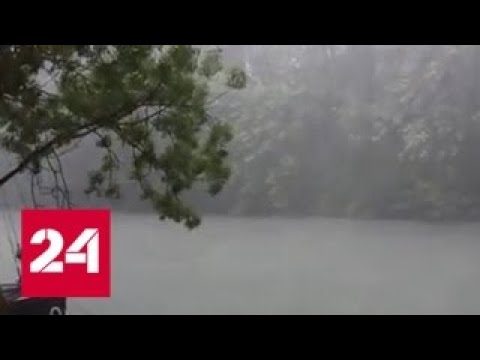 """""""Погода 24"""": на смену засухе идут дожди - Россия 24"""