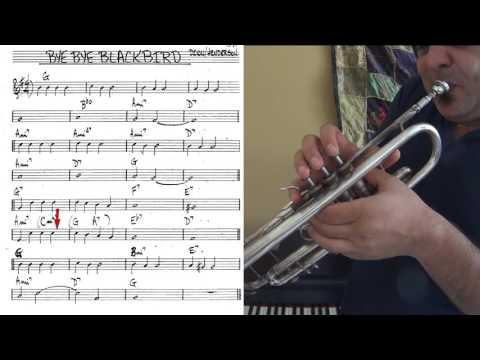 Bye Bye Blackbird - trumpet cover (slow theme tutorial)