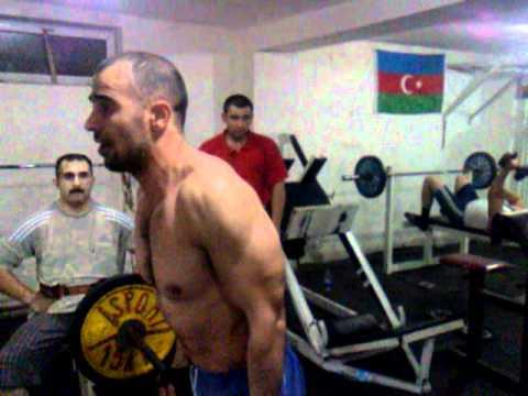 Nzs biceps
