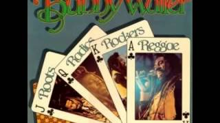 Bunny Wailer -  Roots Radics Rockers Reggae   (Full Album)