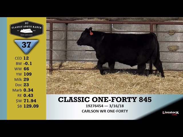 Classic Angus Ranch Lot 37