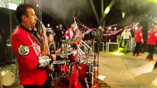Me Vuelve Loco, Luna Llena, Panchitos baybi - Banda Pequeños Musical
