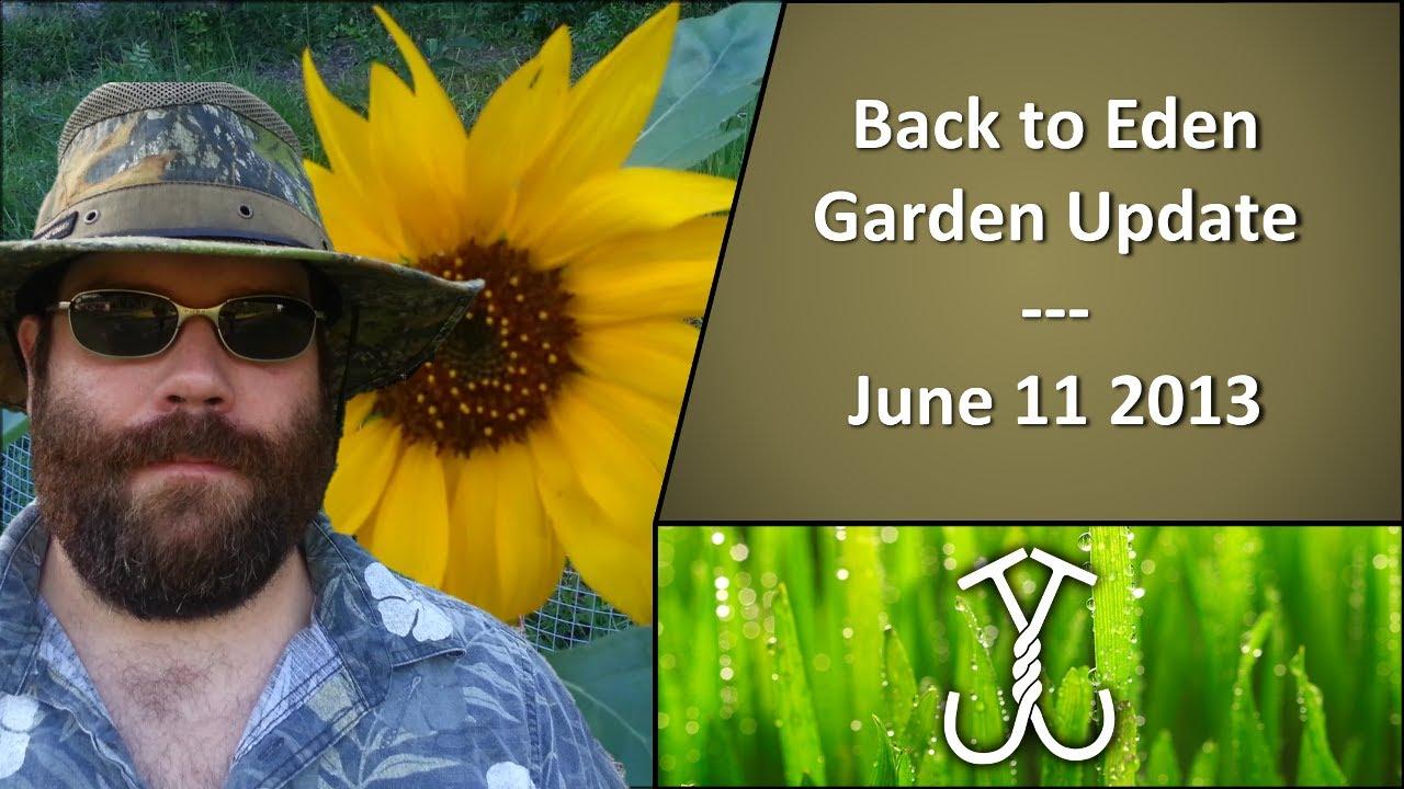 Back To Eden Garden Update June 11 2013 Doovi
