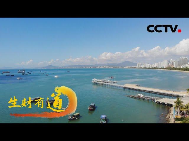 海南三亚:海鲜好味道 海趣多财道 「生财有道之夏日经济系列」20210729 | CCTV财经