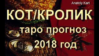 КОТ КРОЛИК ТАРО Прогноз на 2018 год от Anatoly Kart
