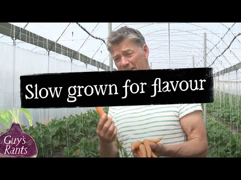 Guy's rant - Are supermarkets killing flavour?